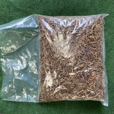 Bird Food – Freeze Dried Mealworms 500g